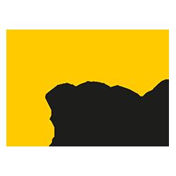 Igel   ACP IT Conference 2021